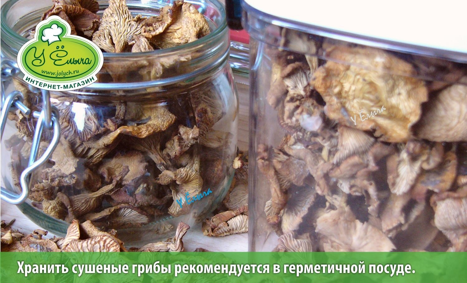 Как хранить белые грибы в домашних условиях 344